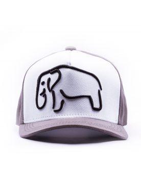 BONÉ-ELEPHANT